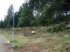 Před pár dny vymýtilo část Plačkovce (název lesu) tornádo