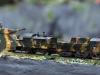 013-obrneny-vlak