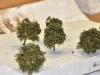 A další stromy z produkce žďárských modelářů