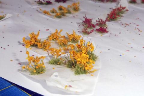 017-květy