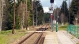 93-NoveUdoli-zelst