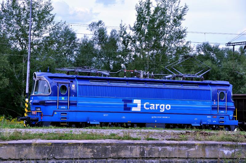 Krasavice v barvách ČD cargo projíždí nádražím