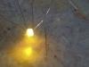 Svítící žlutá část LED SND Bi-color